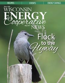 Wisconsin Energy magazine cover