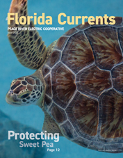 Florida Currents magazine